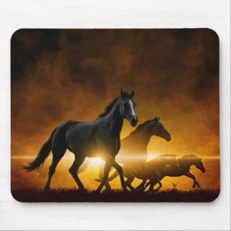Wild Black Horses Mouse Pad