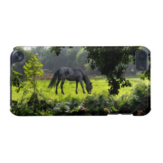 Wild Black New Forest Pony - Grazing Horse U.K. iPod Touch (5th Generation) Cover