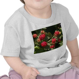 Wild Blackberries T-shirts