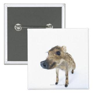Wild boar 15 cm square badge