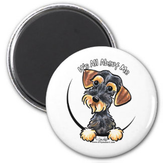Wild Boar Wirehaired Dachshund Its All About Me Magnet