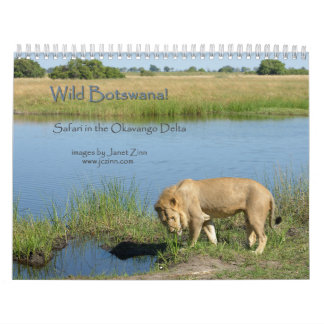 Wild Botswana! Safari in the Okavango Delta Calendars
