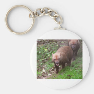 Wild Bush dogs walking Basic Round Button Key Ring