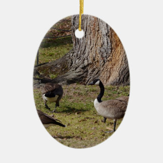 Wild Canada Geese Ceramic Oval Decoration