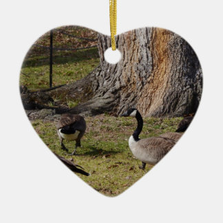 Wild Canada Geese Christmas Ornament