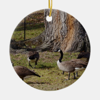 Wild Canada Geese Round Ceramic Decoration