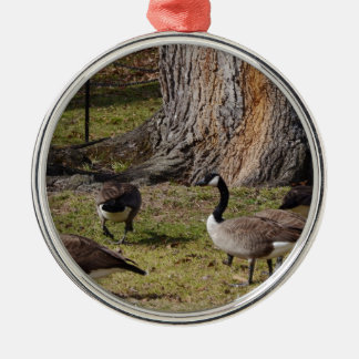 Wild Canada Geese Silver-Colored Round Decoration