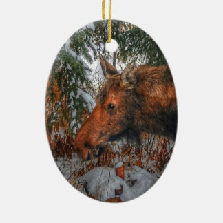 Wild Canadian Moose Grazing in Winter Forest Christmas Ornament