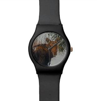 Wild Canadian Moose in Winter Forest Wrist Watch