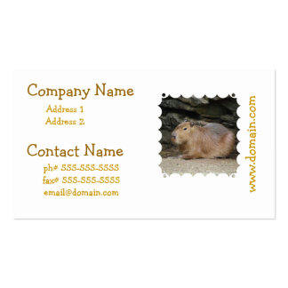 Wild Capybara Mailing Labels Business Card Templates