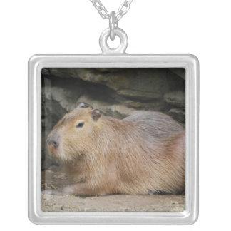 Wild Capybara Necklace