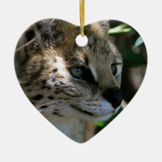 Wild cat head ceramic heart decoration