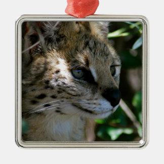 Wild cat head Silver-Colored square decoration
