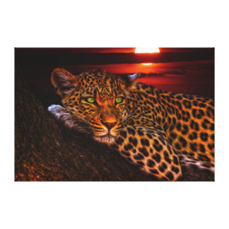 Wild Cat Leopard Canvas Print