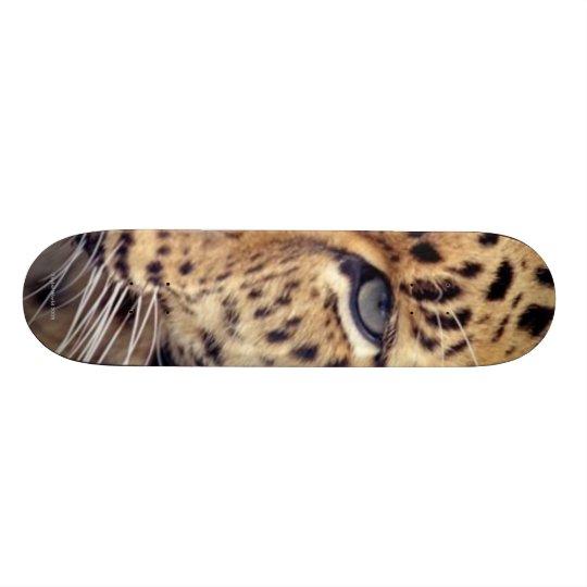Wild Cat Skate Deck
