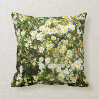 Wild Chamomile - Prairie Mile Cushions