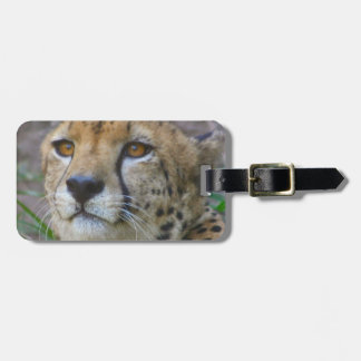 Wild Cheetah Luggage Tag