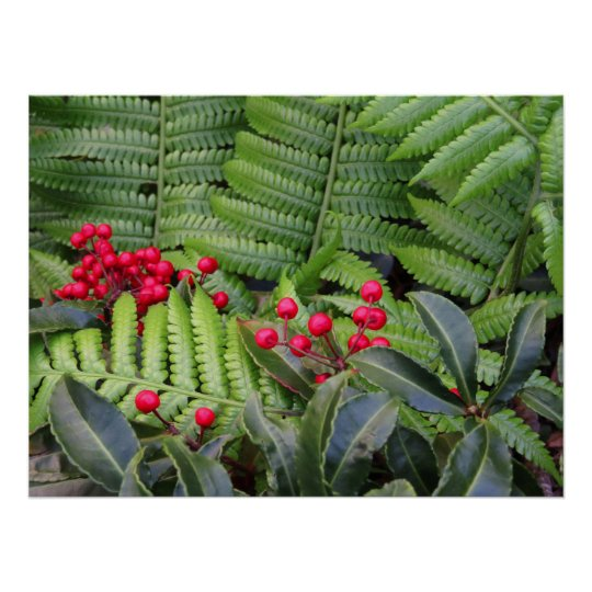 Wild Christmas Berries & Ferns Poster