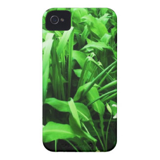 Wild daffodils and dark green leaves. Case-Mate iPhone 4 case