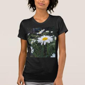 Wild Daisies Cheerful White Yellow Flowers T-Shirt