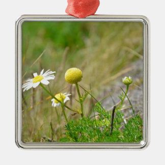 Wild Daisies Christmas Ornament