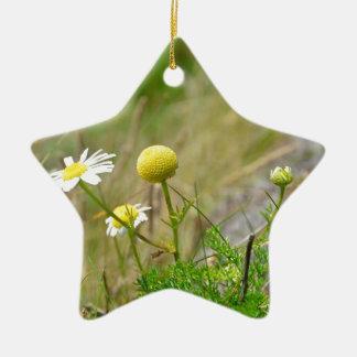 Wild Daisies Christmas Ornament