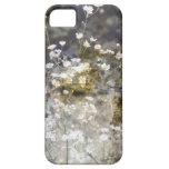 Wild Daisies iPhone 5 Covers