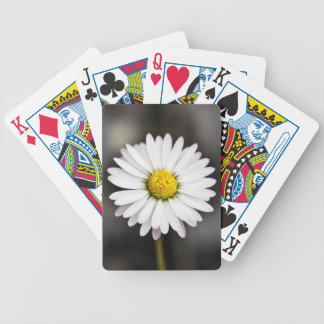 Wild Daisy White and Yellow Bicycle Playing Cards