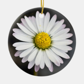 Wild daisy white and yellow christmas ornament