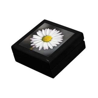 Wild daisy white and yellow gift box