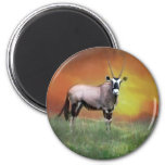 Wild deer at sunset 6 cm round magnet