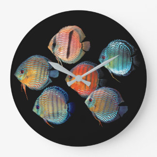 Wild Discus fish Large Clock