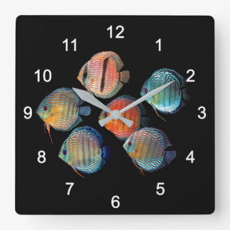 Wild Discus fish Square Wall Clock