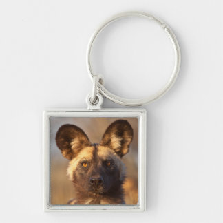 Wild Dog Portrait Key Ring