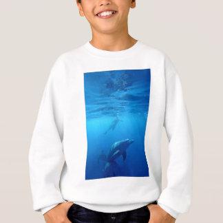 Wild Dolphins Sweatshirt