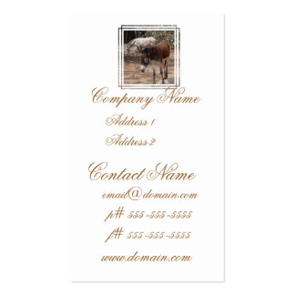 Wild Donkeys Pack Of Standard Business Cards