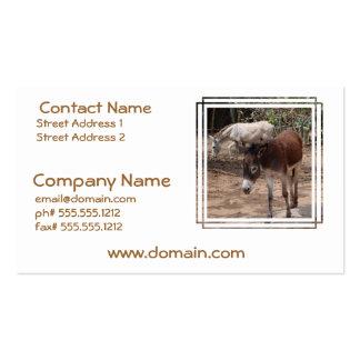 Wild Donkeys Business Cards