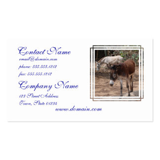 Wild Donkeys Business Card Template