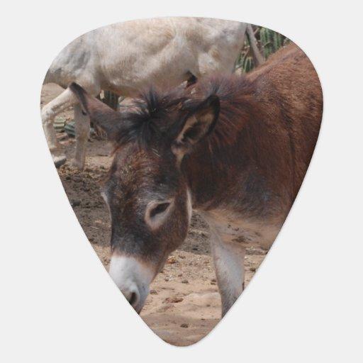 Wild Donkeys Guitar Pick