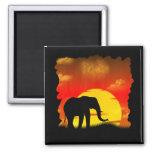Wild Elephant Magnet