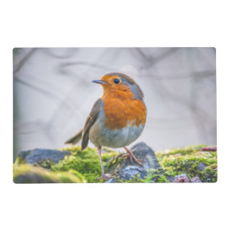 Wild European Robin Laminated Placemat