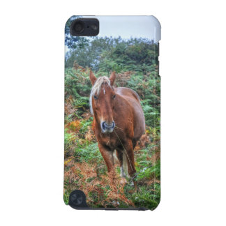Wild Flaxen-maned New Forest Pony & Bracken UK iPod Touch 5G Cases