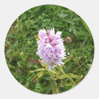 Wild flower 2 round sticker