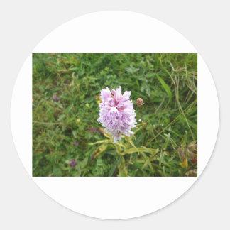 Wild flower 2 sticker