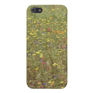 Wild Flower Iphone Case iPhone 5/5S Cases