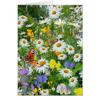 Wild Flower Meadow Card