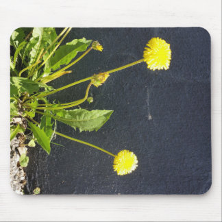wild flower mouse pad