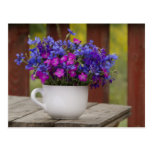 wild flowers, carnation and cornflower post cards