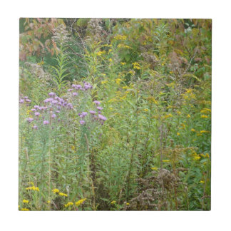 Wild Flowers from a Walk in the Woods Ceramic Tile