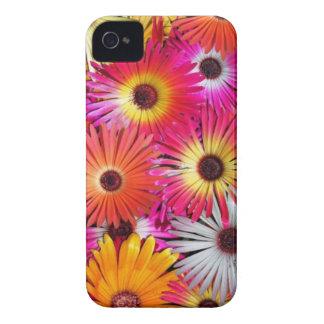 wild flowers iPhone 4 case